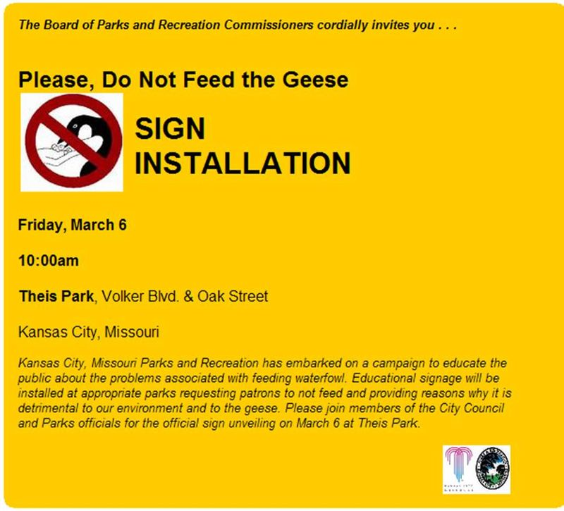 Don't feed the Geese!