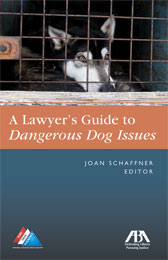 Lawyer's Guide to DDI