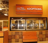 0427-adoptioncenter