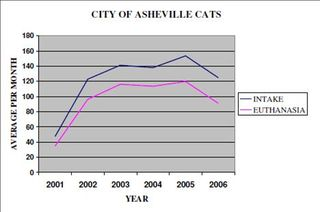 Asheville Cats