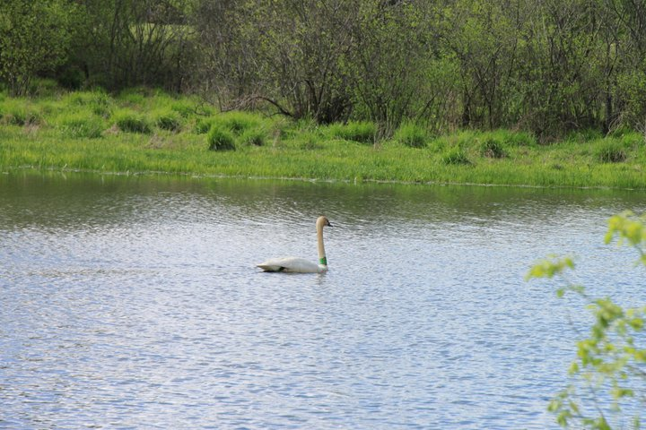 Swan-Boxley Valley