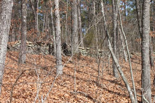 Squaw Creek, Arkansas March 2013 042