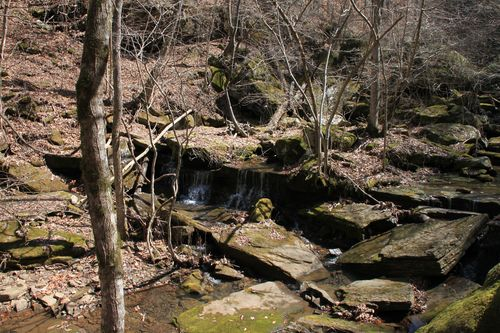 Squaw Creek, Arkansas March 2013 063