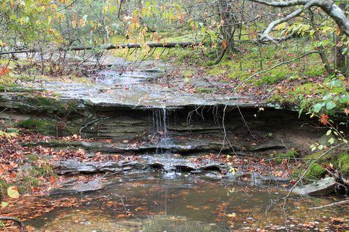 Arkansas - Fall 2012 353