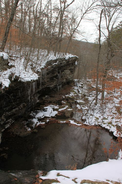 Arkansas - December 2012 168