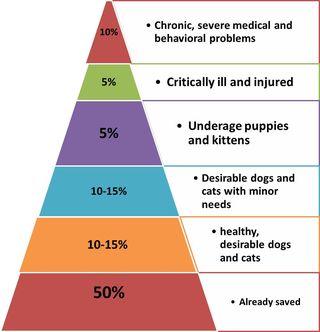 Ellen Jefferson's Pyramid of Life Saving
