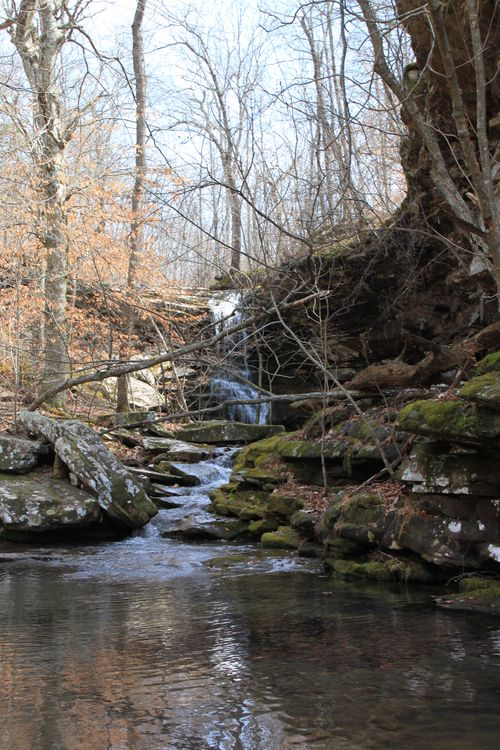 Squaw Creek, Arkansas March 2013 095