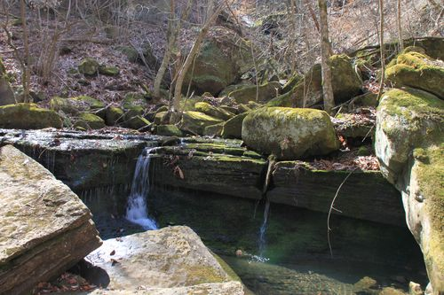 Squaw Creek, Arkansas March 2013 062