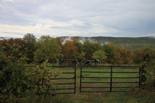 Arkansas - Fall 2012 294