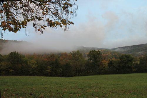 Arkansas - Fall 2012 393