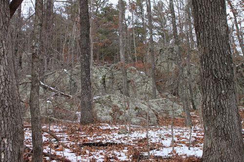 Arkansas - December 2012 128