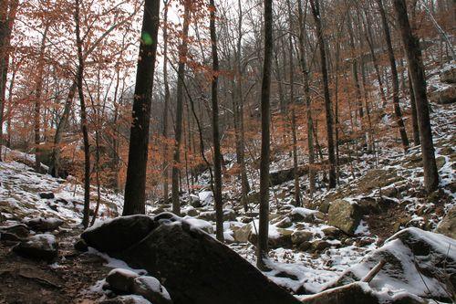Arkansas - December 2012 098