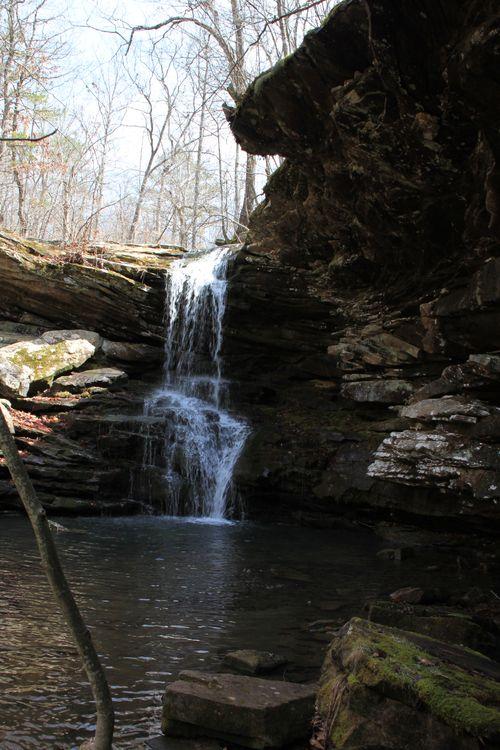 Squaw Creek, Arkansas March 2013 101