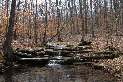 Squaw Creek, Arkansas March 2013 120