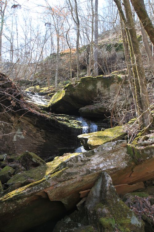 Squaw Creek, Arkansas March 2013 065