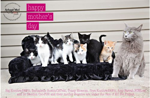 KCPP Mothers Day Card 3