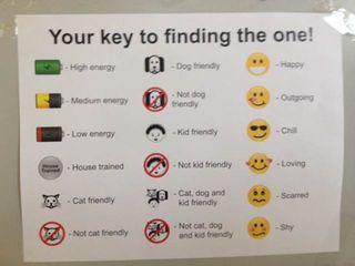 Kennel Card Key