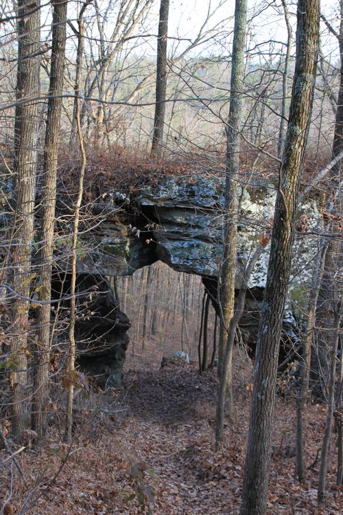 Pedestal Rocks 095
