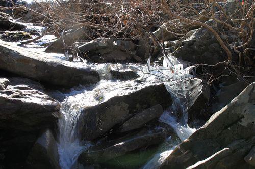 Falling Water Creek Area 021