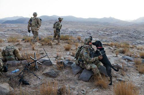 16-army-staff-sgt-bonds-with-labrador-670