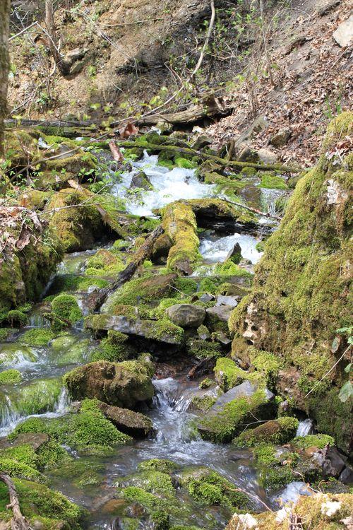 Burr Oak Woods, Big Creek Cave Falls, Fern Falls 068