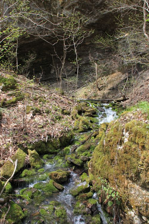 Burr Oak Woods, Big Creek Cave Falls, Fern Falls 070