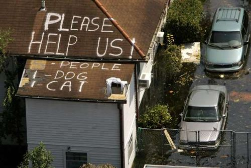 Katrina - Please Help Us