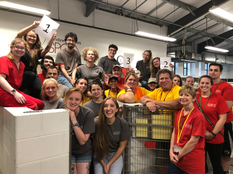 Brandywine - Clear the Shelter 2019