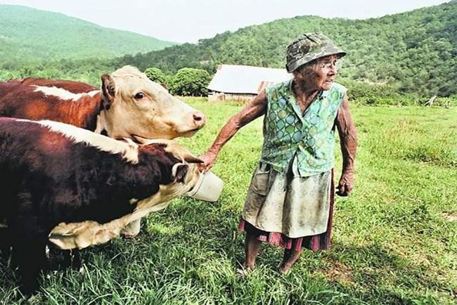 Granny-Henderson
