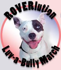 Roverlution