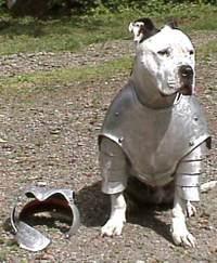 Dog_armour