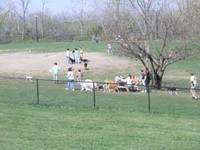 Penn_valley_dog_park